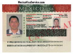 MEXICO VISA SAMPLE